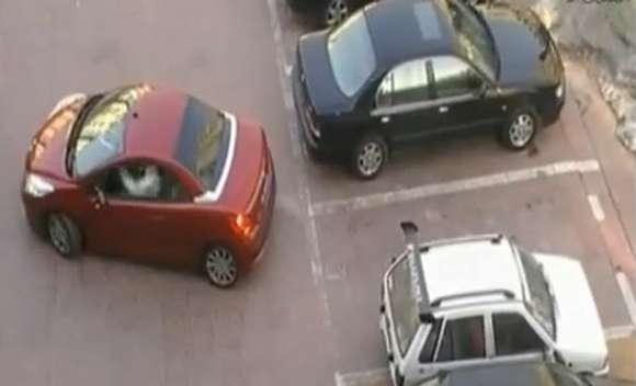 parkinggirllol glo1