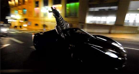 Ferrari i zebra